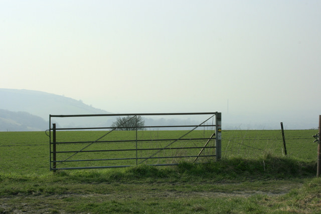 2009 : Field gate on Edington Hill