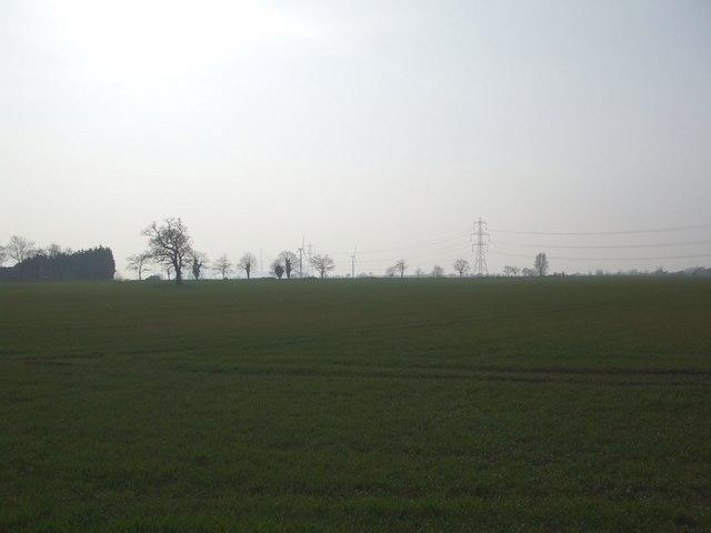 Fields near Newsholme