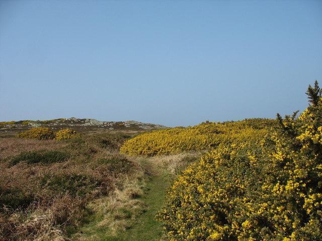 The Anglesey Coastal Path near Cerrig Brith