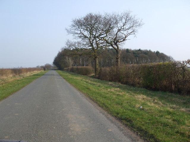 Brind Lane