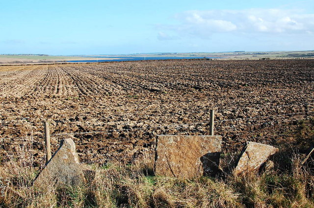 Ploughed field and remnants of flagstone wall