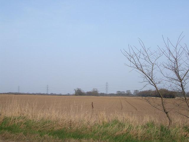 Windman Hills Fields