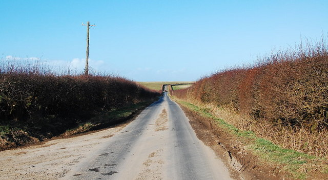 Lane with hedgerows