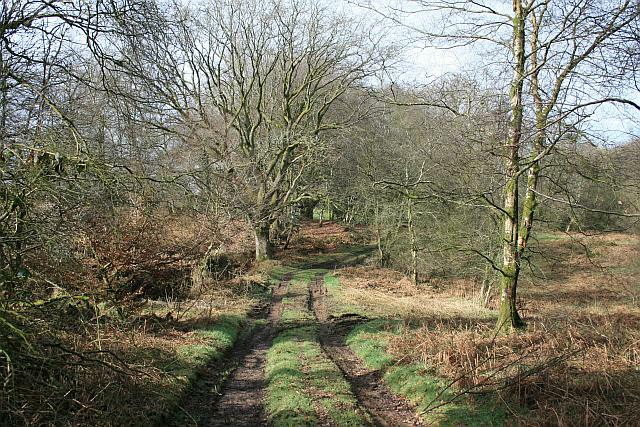 Footpath from Hunter's Lodge to Churchstanton