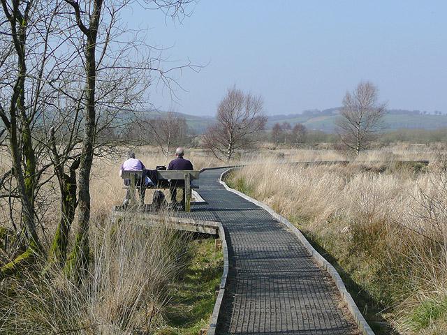 Boardwalk over the Bog of Tregaron, Ceredigion