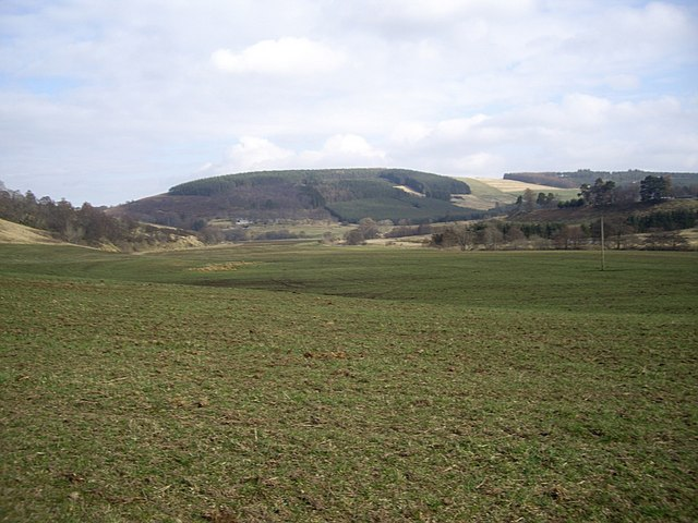 View NE from green lane to Walla Kirk
