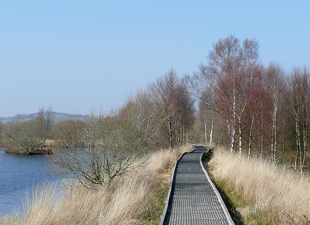 Boardwalk through the Bog of Tregaron, Ceredigion
