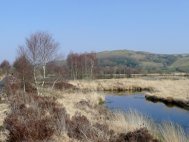 Cors Caron in March, near Tregaron, Ceredigion