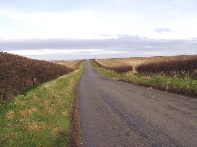 Grindale Lane Towards Grindale