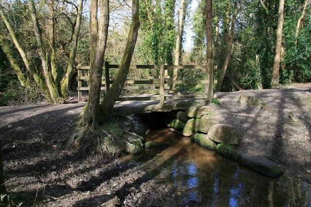 Bridge in Peckhill Wood
