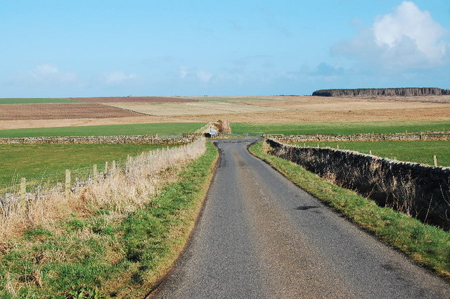 Lane near Durran Mains