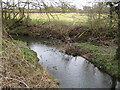 SU8771 : Bull Brook at its confluence with The Cut by Nigel Cox