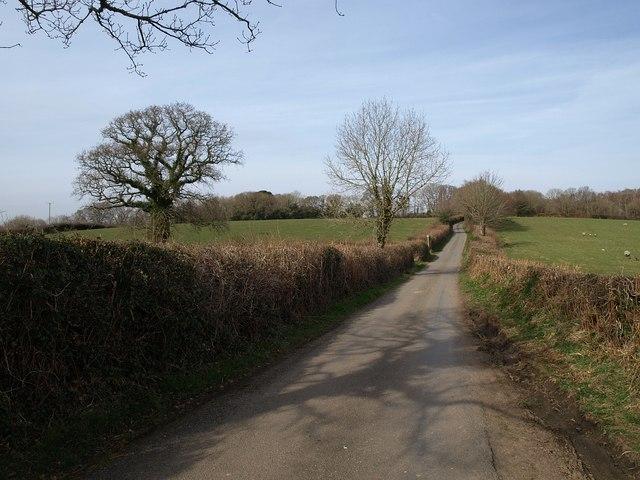 Lane near Holden Cross