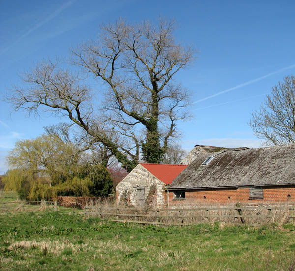 Barns at Home Farm