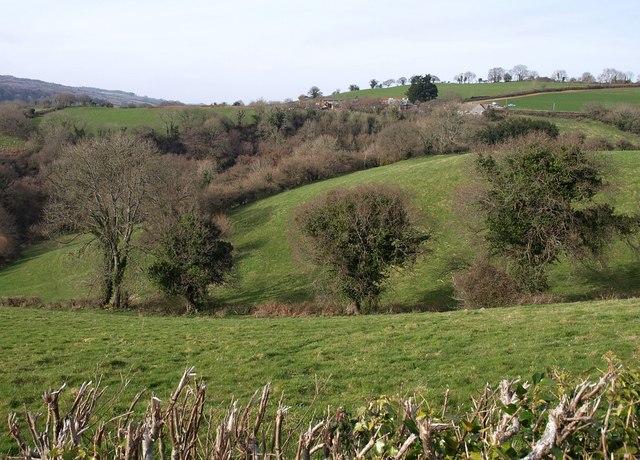 Valley near Trusham