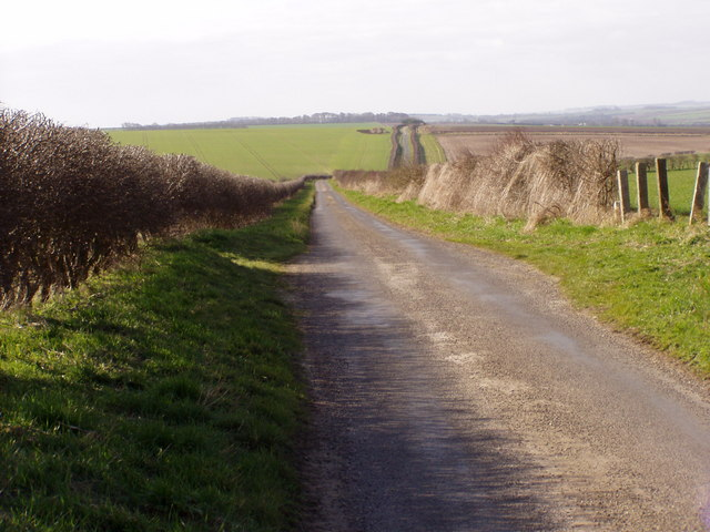 View Down the Lane