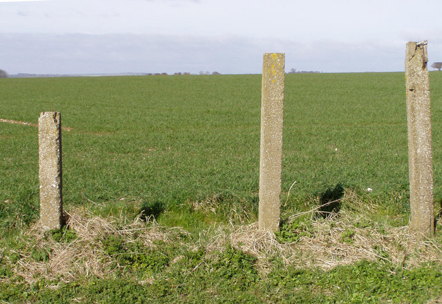 Concrete Posts and Field