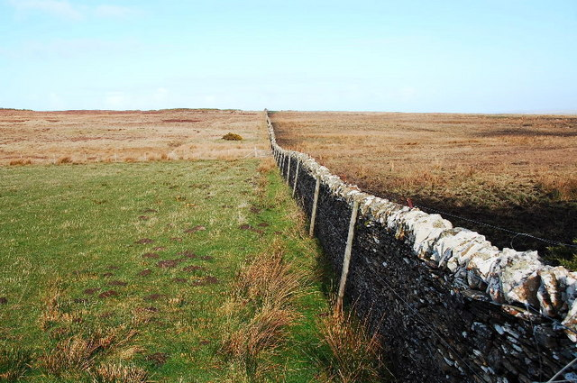 Dry stone wall (dyke)