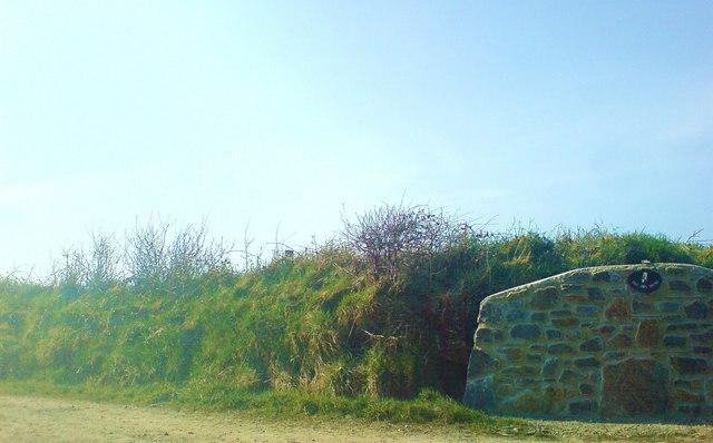 Lane to the Owl House