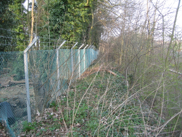 Railway fence - Reading line