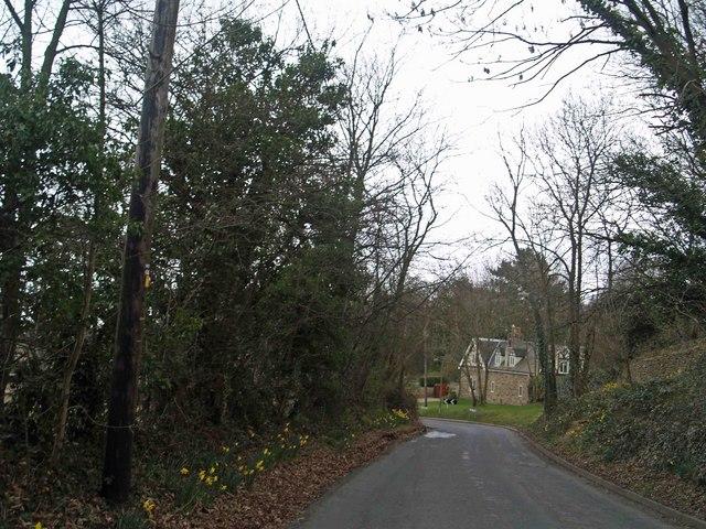 Scholes Lane near Rotherham