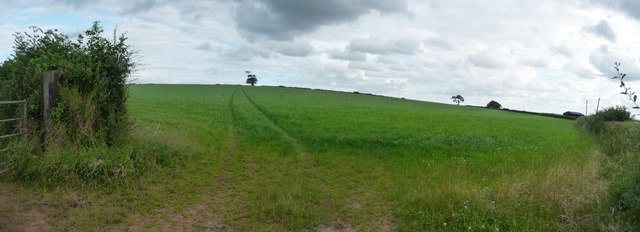 Mid Devon : Green Field