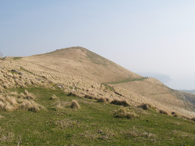 Tyneham Cap