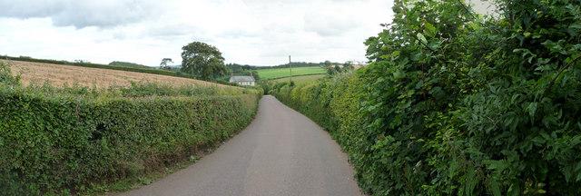 Mid Devon : Horn Hill