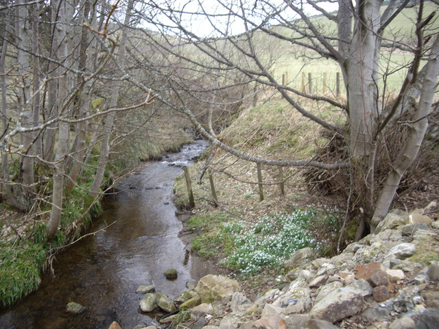 Upstream Chapel Burn