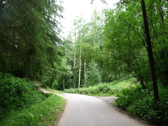 Mid Devon : The Old Bampton Road