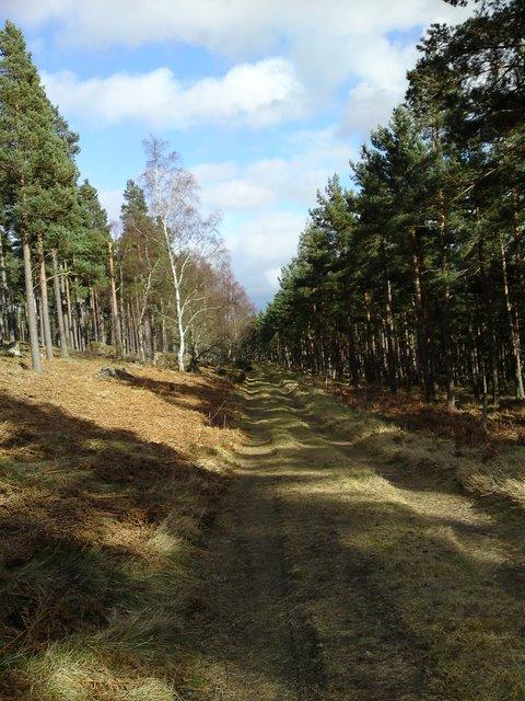 Track to Craigmore Croft
