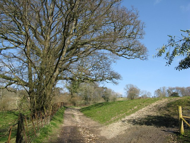 The bridleway dropping down into Minterne Magna