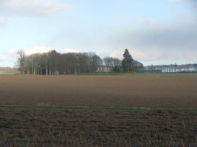 Parkburn Farm from Montrose's Camp