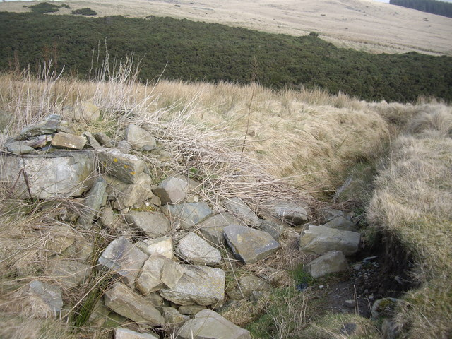 Drain into Linn Burn