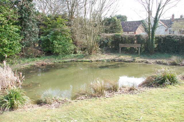 Willy Pit Pond Warlingham