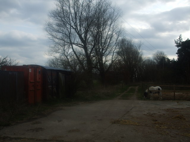 An old goods wagon and friendly pony