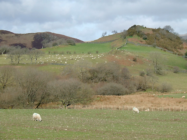 Farmland near Ysbyty Cynfyn, Ceredigion