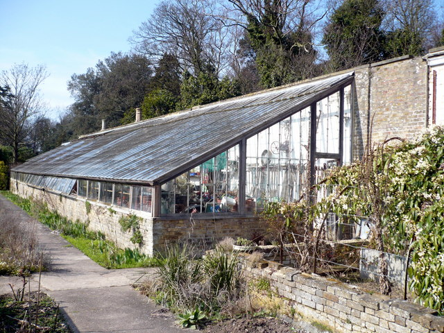 Victorian lean-to greenhouse in the walled garden at Quex Park