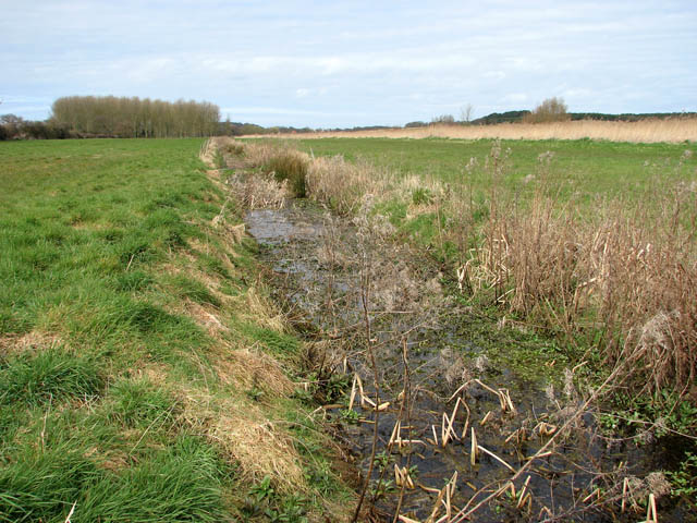 Drainage ditch separating pastures