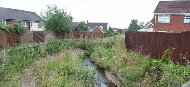 Tiverton : Moorhayes Stream