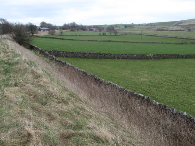 Towards Parsley Hay