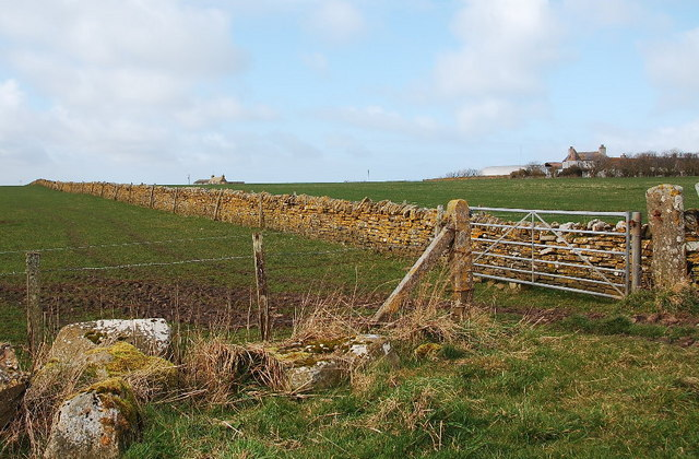 Dyke, fence and gate