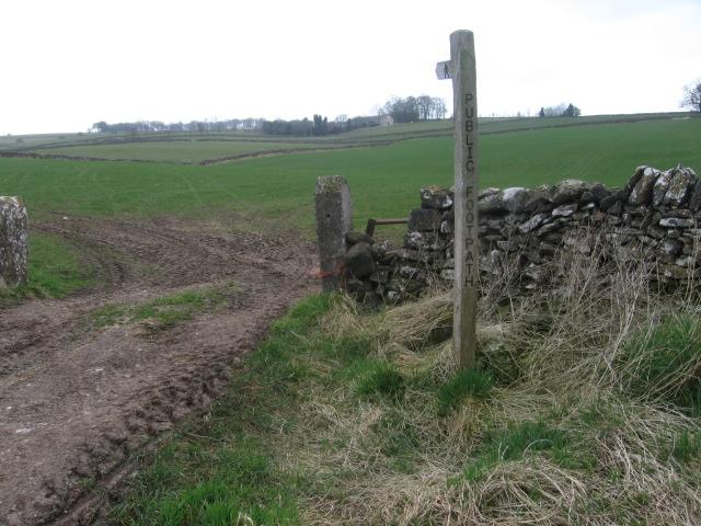 Footpath toward Highlow Farm