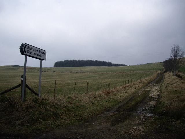 Lane towards Westfolds