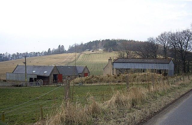 Approach to Oldmanse Farm