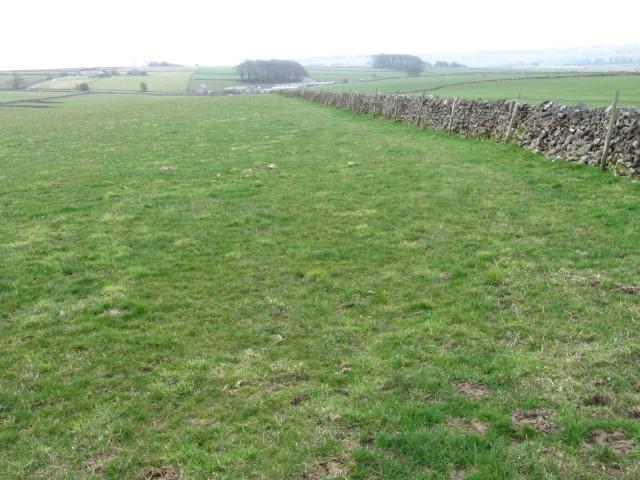 Towards Horse Lane