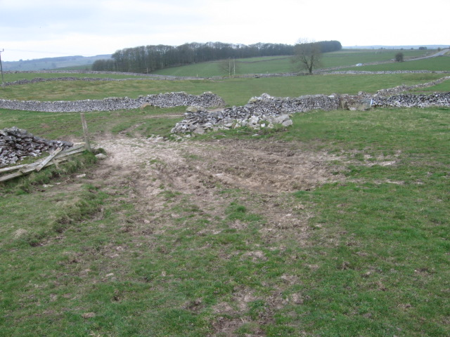 Towards Hard Rake Plantation