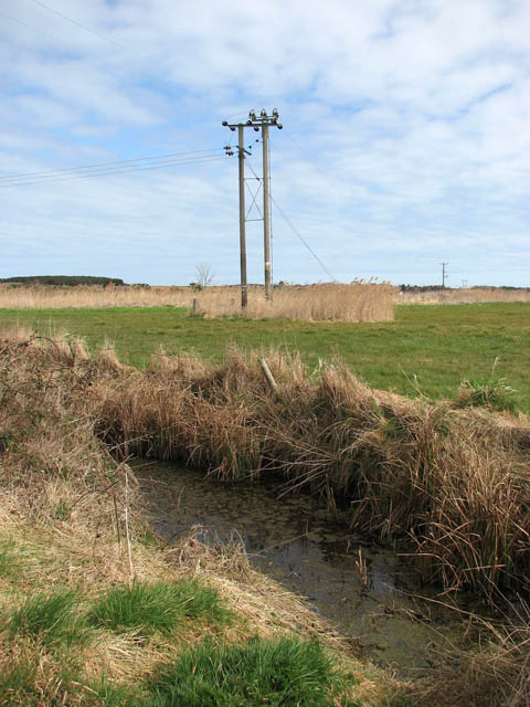 Electricity poles and drainage ditches