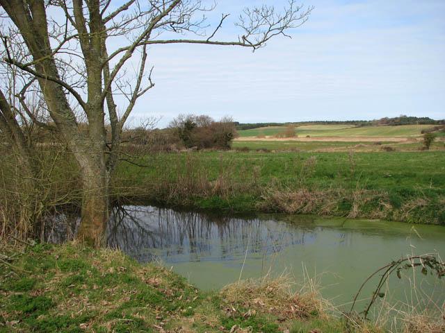 Pond by Hall Farm