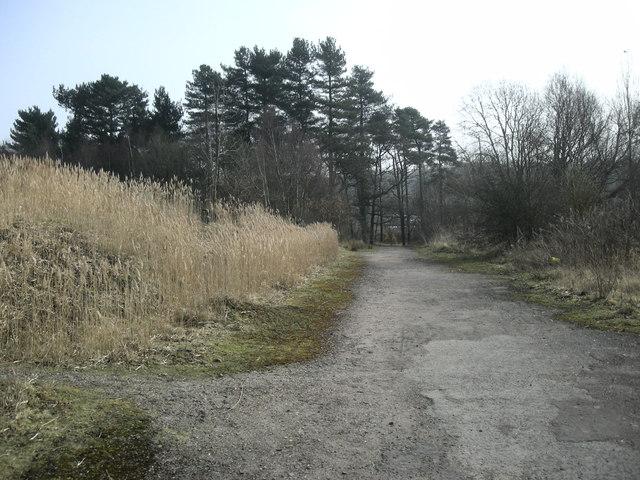 Binley-Claybrookes Marsh